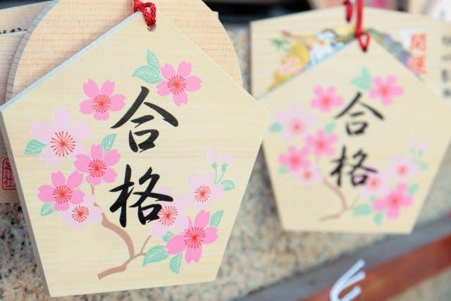 桐朋学園小学校の特色と合格のための対策